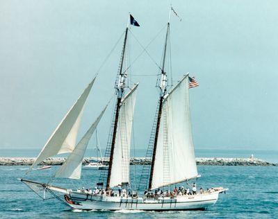 Pilgrim of Newport